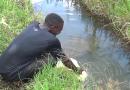 Kicukiro:Ibura ry'amazi rituma bavoma y'umugezi wa Nyirakanamba